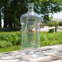 Carboy - 3 Gallon Plastic Fermenter