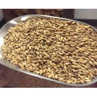 Briess Carapils Dextrine Malt