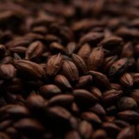 Dingemans Mr. 900 Chocolate Grain Malt