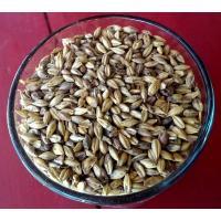 Briess Carabrown Grain Malt