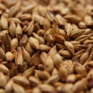 Dingemans Cara 45 Grain Malt