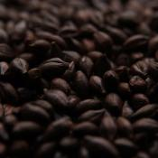 Swaen BlackSwaen Coffee Malt Grain