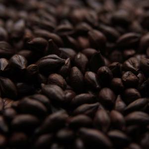 Dingemans Debittered Black Malt Grain