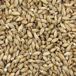 Dingemans Belgian Pilsen Malt Grain
