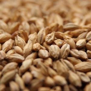 Weyermann Carafoam Grain Malt