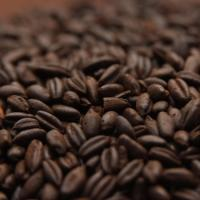 Weyermann Chocolate Rye Malt