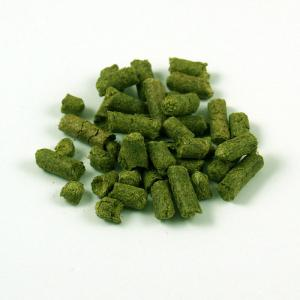 South Africa African Queen Hops, 1 oz. Pellets