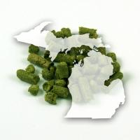 Michigan Organic Brewers Gold Hops, 1 oz. Pellets