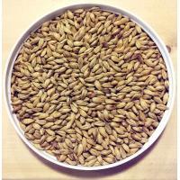 Briess Bonlander Munich 10L Grain Malt
