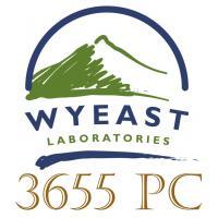 Wyeast 3655 PC Belgian Schelde 3Q14 Yeast