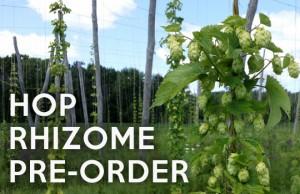 2016 Hop Rhizome Preorders